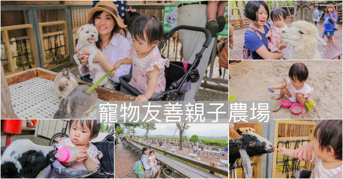 高雄親子景點 寵物友善農場│淨園休閒農場~看飛機咖啡廳 小型動物園