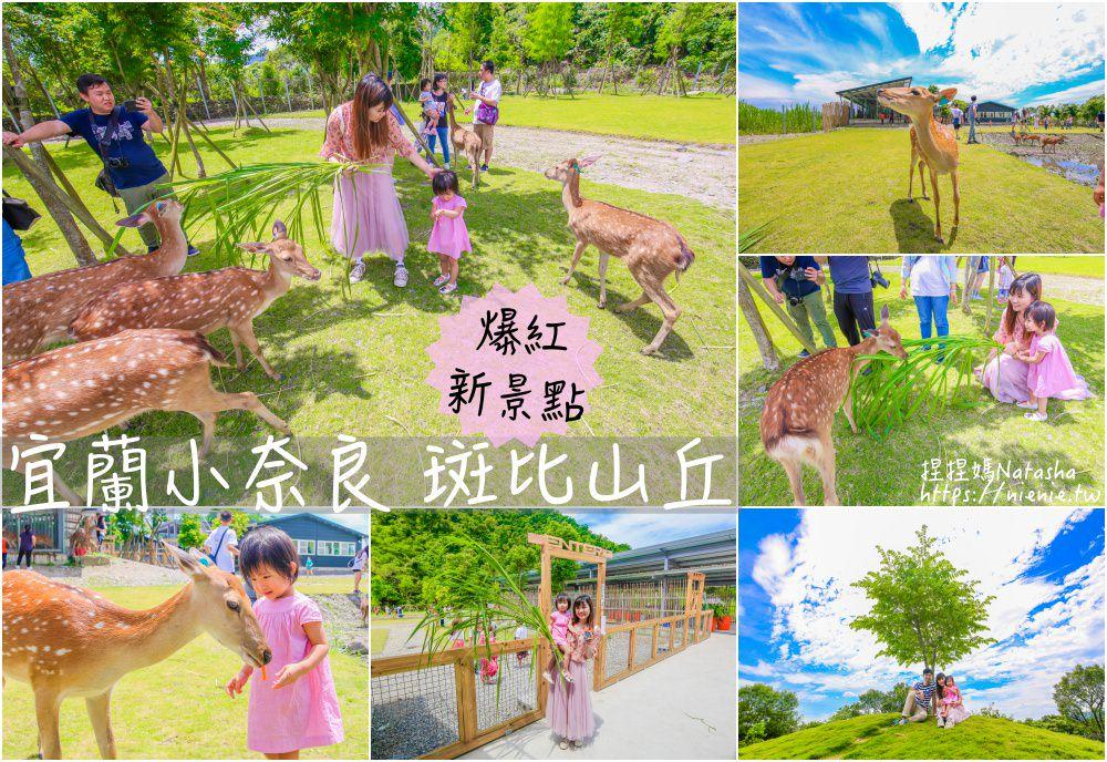 斑比山丘 宜蘭爆紅新景點~台灣版奈良。與梅花鹿零距離互動餵食