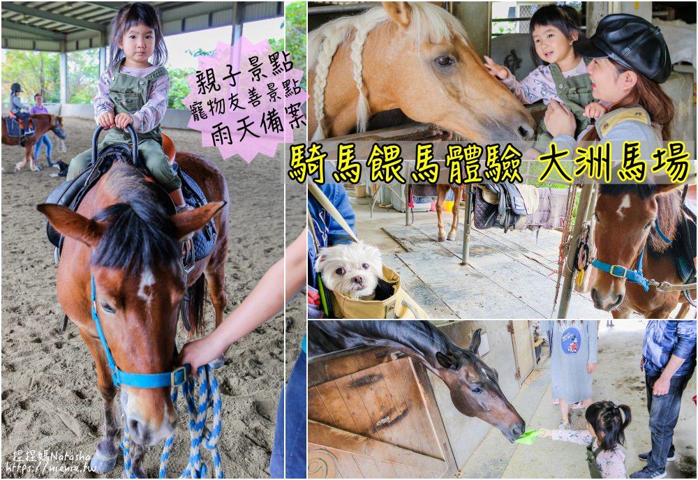 宜蘭騎馬 親子活動│宜蘭三星│大洲馬場~平價體驗騎馬餵馬樂趣。雨天備案