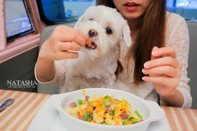 寵物友善餐廳│台北士林天母美食│PS BUBU汽車餐廳~坐在金龜車裡享用南加州義大利餐點(有提供寵物餐)58