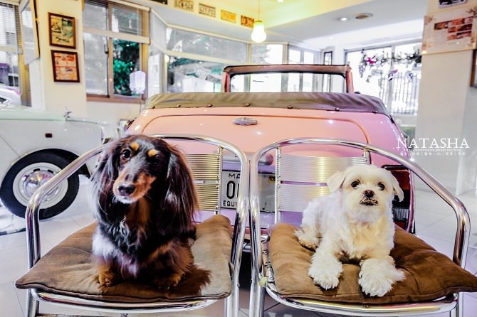 寵物友善餐廳│台北士林天母美食│PS BUBU汽車餐廳~坐在金龜車裡享用南加州義大利餐點(有提供寵物餐)74