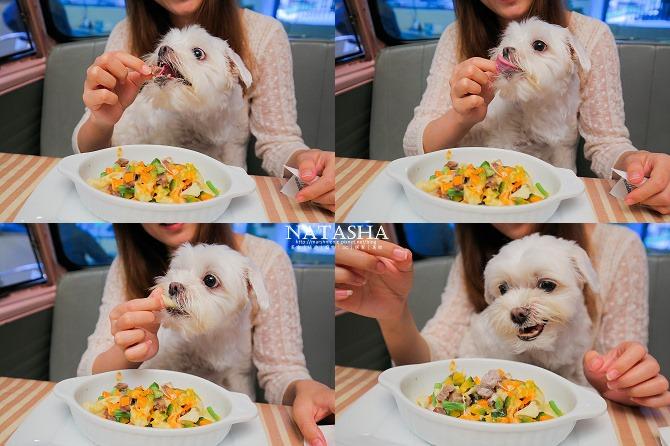 寵物友善餐廳│台北士林天母美食│PS BUBU汽車餐廳~坐在金龜車裡享用南加州義大利餐點(有提供寵物餐)83