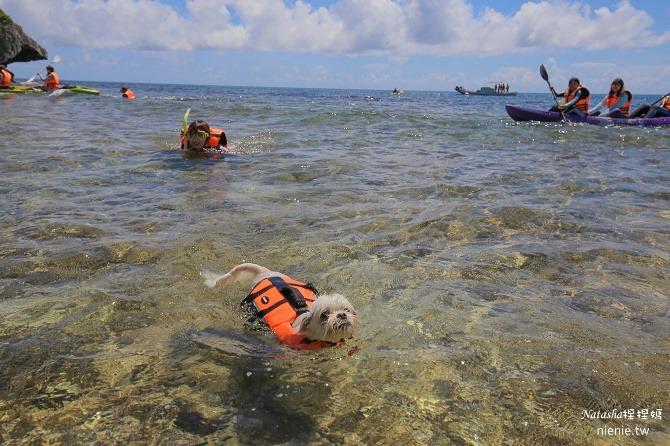 寵物旅遊│小琉球│和狗狗一起划獨木舟出海浮淺看海龜19