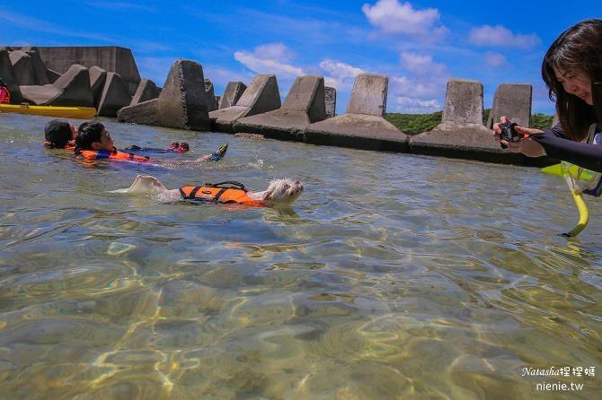 寵物旅遊│小琉球│和狗狗一起划獨木舟出海浮淺看海龜23