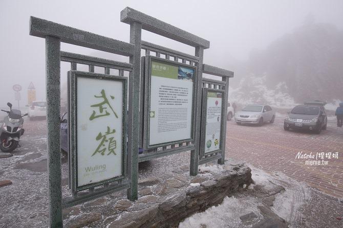 合歡山賞雪│寵物賞雪│賞雪攻略雪鍊租售及寵物追雪必備物品清單02