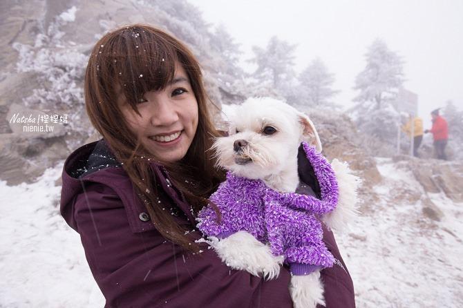 合歡山賞雪│寵物賞雪│賞雪攻略雪鍊租售及寵物追雪必備物品清單06