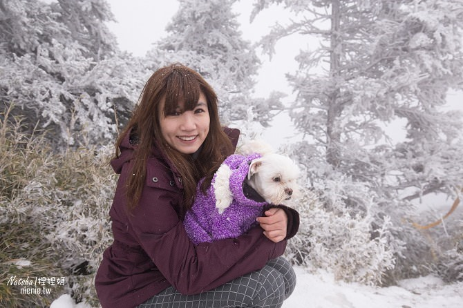 合歡山賞雪│寵物賞雪│賞雪攻略雪鍊租售及寵物追雪必備物品清單11
