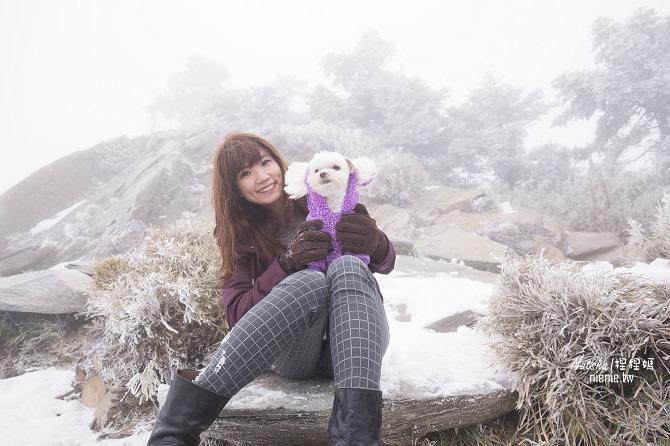 合歡山賞雪│寵物賞雪│賞雪攻略雪鍊租售及寵物追雪必備物品清單17