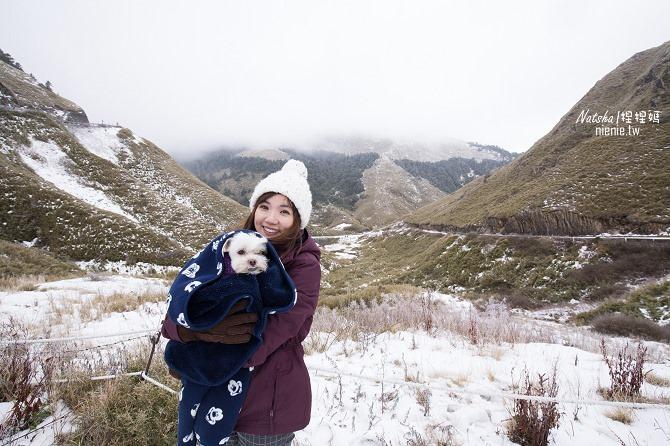 合歡山賞雪│寵物賞雪│賞雪攻略雪鍊租售及寵物追雪必備物品清單34