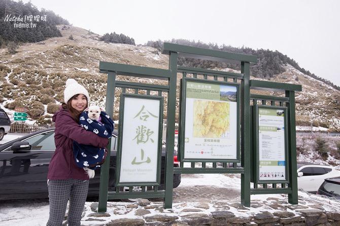合歡山賞雪│寵物賞雪│賞雪攻略雪鍊租售及寵物追雪必備物品清單36
