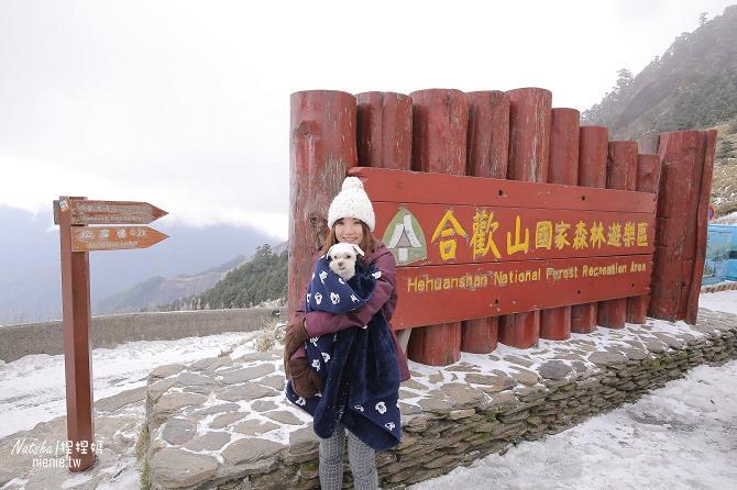 合歡山賞雪│寵物賞雪│賞雪攻略雪鍊租售及寵物追雪必備物品清單41