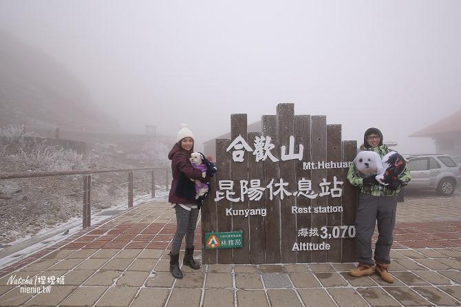 合歡山賞雪│寵物賞雪│賞雪攻略雪鍊租售及寵物追雪必備物品清單56