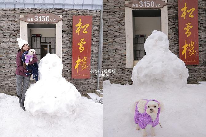 合歡山賞雪│寵物賞雪│賞雪攻略雪鍊租售及寵物追雪必備物品清單77