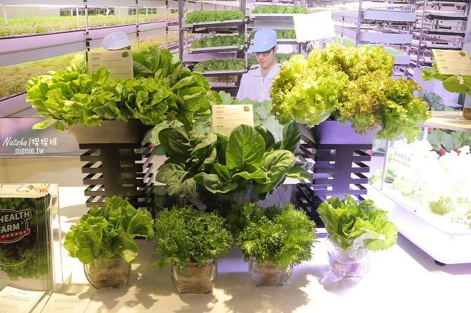 蔬菜推薦│源鮮智慧農場~全環控仿自然環境結合益生菌發酵肥料種植的純淨安全蔬菜05