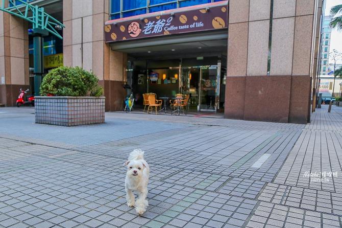寵物友善餐廳│新北中和美食│老爺爺咖啡~上萬元高級全身按摩椅讓你喝咖啡吃美食超放鬆60