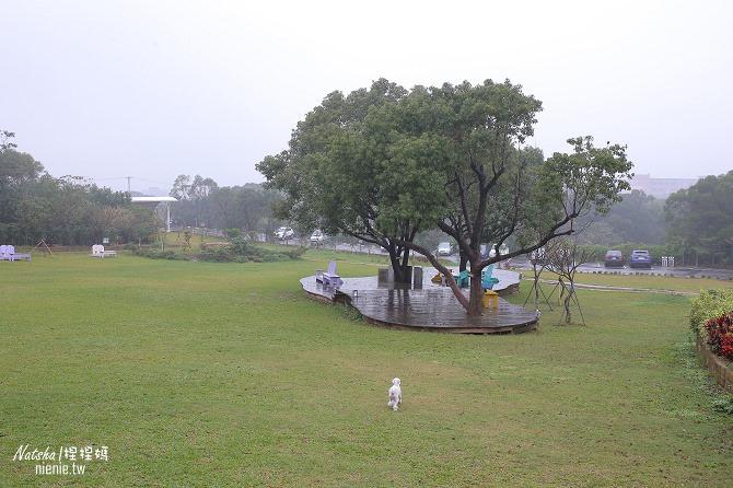 寵物友善餐廳│新竹香山美食│綠鏡景觀餐廳~景觀大道上擁有大片草皮的玻璃屋餐廳19