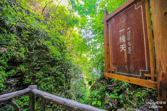 大陸張家界五天四夜│景點推薦│張家界大峽谷~世界最長玻璃橋體驗峡谷高空滑索及百米溜滑梯10