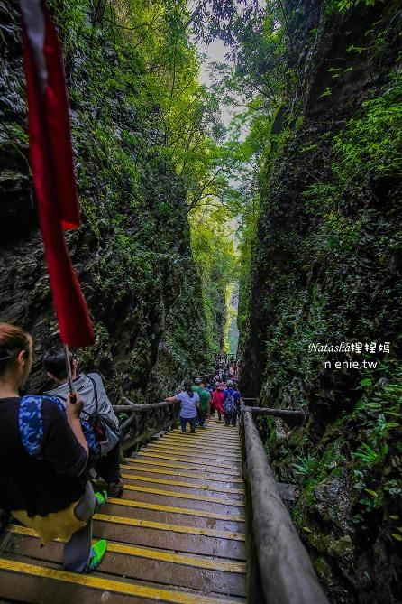 大陸張家界五天四夜│景點推薦│張家界大峽谷~世界最長玻璃橋體驗峡谷高空滑索及百米溜滑梯201