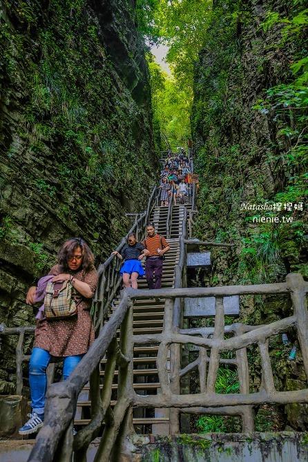 大陸張家界五天四夜│景點推薦│張家界大峽谷~世界最長玻璃橋體驗峡谷高空滑索及百米溜滑梯202