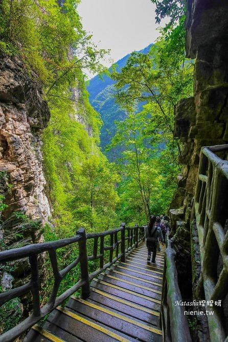 大陸張家界五天四夜│景點推薦│張家界大峽谷~世界最長玻璃橋體驗峡谷高空滑索及百米溜滑梯208