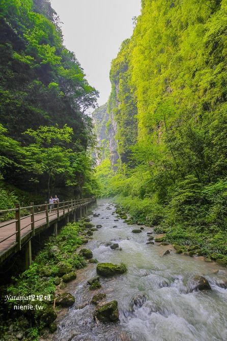 大陸張家界五天四夜│景點推薦│張家界大峽谷~世界最長玻璃橋體驗峡谷高空滑索及百米溜滑梯212