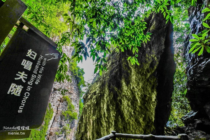 大陸張家界五天四夜│景點推薦│張家界大峽谷~世界最長玻璃橋體驗峡谷高空滑索及百米溜滑梯23