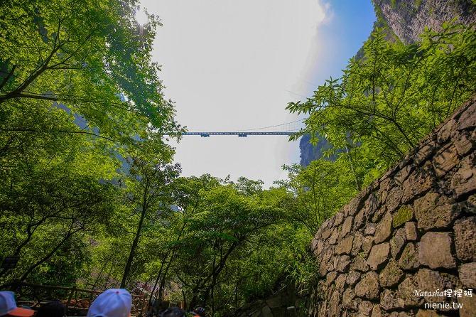 大陸張家界五天四夜│景點推薦│張家界大峽谷~世界最長玻璃橋體驗峡谷高空滑索及百米溜滑梯36