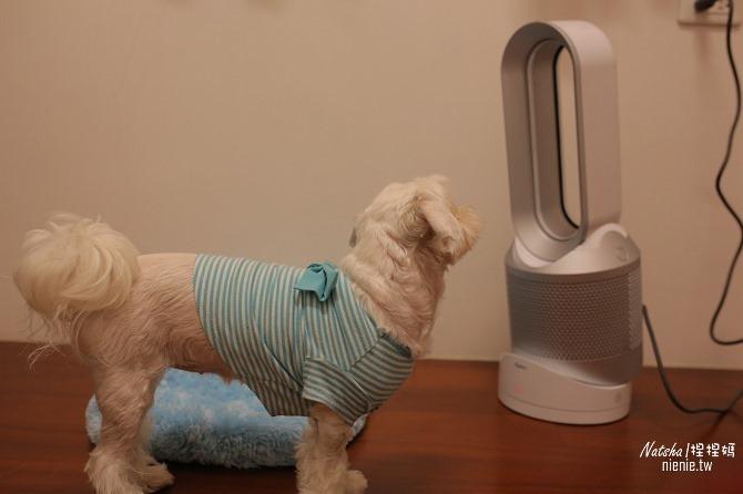 空氣淨化冷暖風扇推薦│Dyson Pure Hot Cool空氣清淨涼暖氣流倍增器~淨化暖風涼風三合一。過濾PM0.1有害細懸浮微粒減緩過敏症狀14