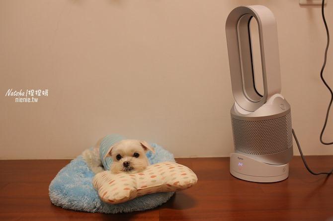 空氣淨化冷暖風扇推薦│Dyson Pure Hot Cool空氣清淨涼暖氣流倍增器~淨化暖風涼風三合一。過濾PM0.1有害細懸浮微粒減緩過敏症狀16