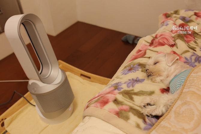空氣淨化冷暖風扇推薦│Dyson Pure Hot Cool空氣清淨涼暖氣流倍增器~淨化暖風涼風三合一。過濾PM0.1有害細懸浮微粒減緩過敏症狀27