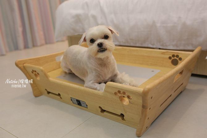 寵物床│Beetle的寵物專用冰暖床~對抗寒流及酷夏最佳節電環保床一天不到5元18