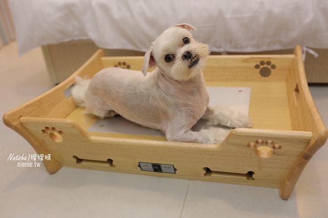 寵物床│Beetle的寵物專用冰暖床~對抗寒流及酷夏最佳節電環保床一天不到5元19