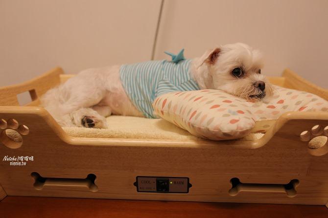 寵物床│Beetle的寵物專用冰暖床~對抗寒流及酷夏最佳節電環保床一天不到5元33