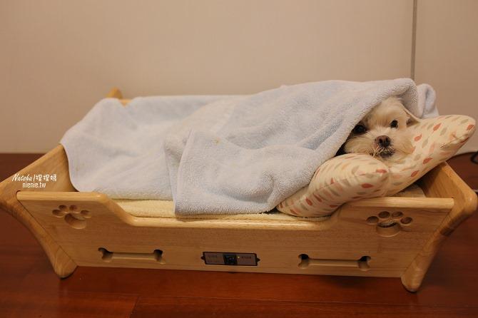 寵物床│Beetle的寵物專用冰暖床~對抗寒流及酷夏最佳節電環保床一天不到5元34