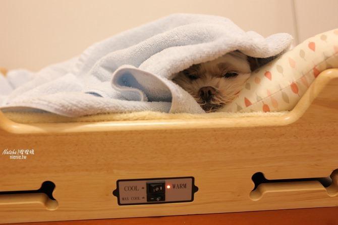 寵物床│Beetle的寵物專用冰暖床~對抗寒流及酷夏最佳節電環保床一天不到5元37