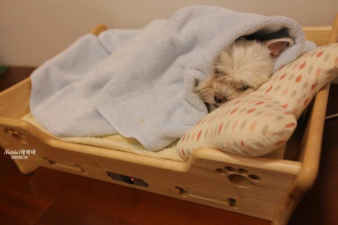 寵物床│Beetle的寵物專用冰暖床~對抗寒流及酷夏最佳節電環保床一天不到5元38