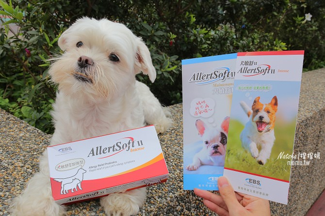 寵物益生菌│捏捏急性過敏治療分享│犬敏舒~專為犬貓設計的益生菌調節過敏體質及改變腸道菌相幫助消化吸收13