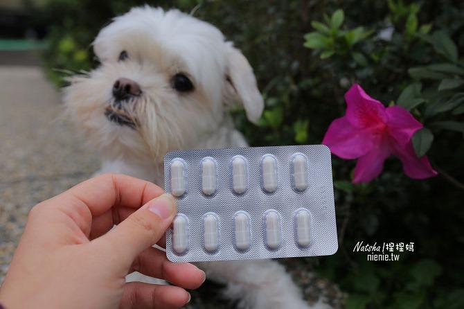 寵物益生菌│捏捏急性過敏治療分享│犬敏舒~專為犬貓設計的益生菌調節過敏體質及改變腸道菌相幫助消化吸收30