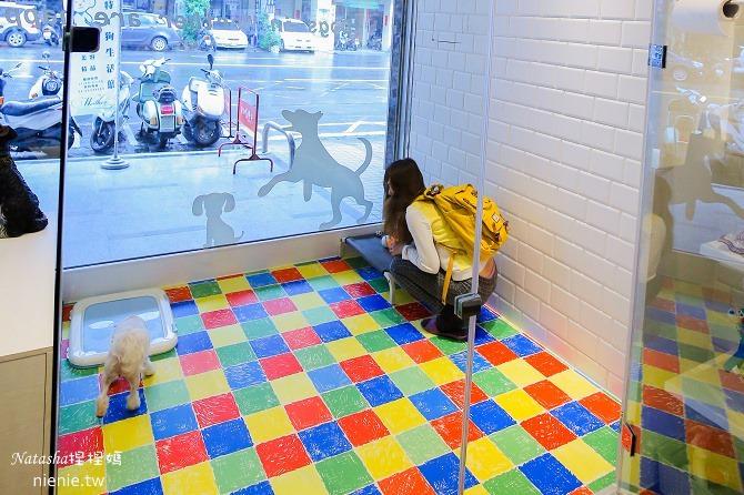 台中狗旅館-瑋特ㄚ狗生活館一樓遊戲區很大很乾淨