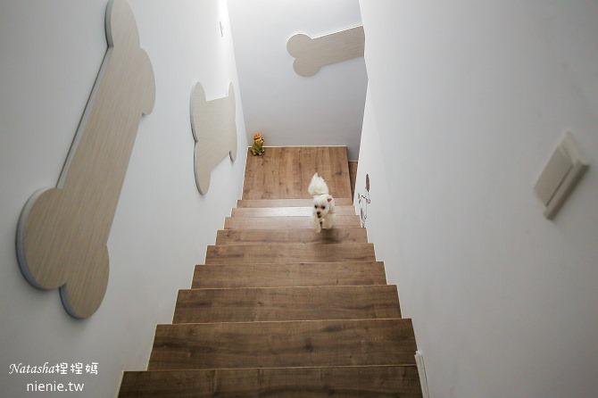 台中狗旅館-瑋特ㄚ狗生活館的樓梯