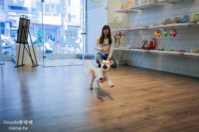 台中狗旅館-瑋特ㄚ狗生活館的一樓空間
