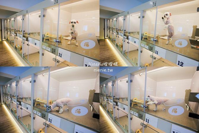 台中狗旅館-瑋特ㄚ狗生活館的最小房型