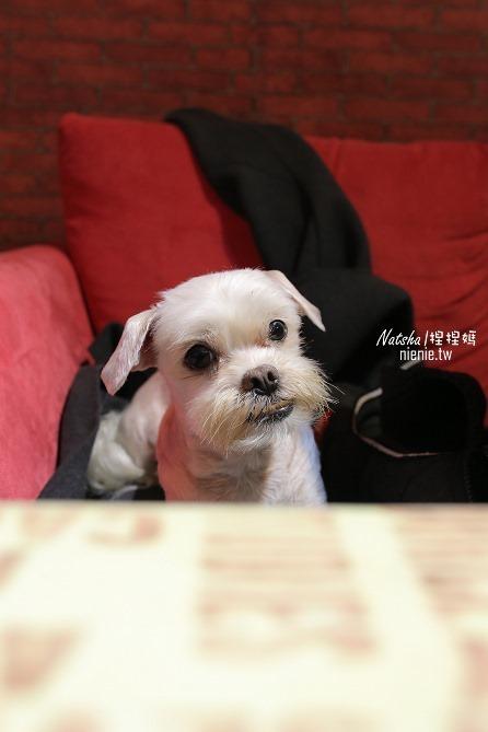 寵物友善餐廳│新竹北區美食│幸福的味道~超好吃的草莓塔甜點推薦47