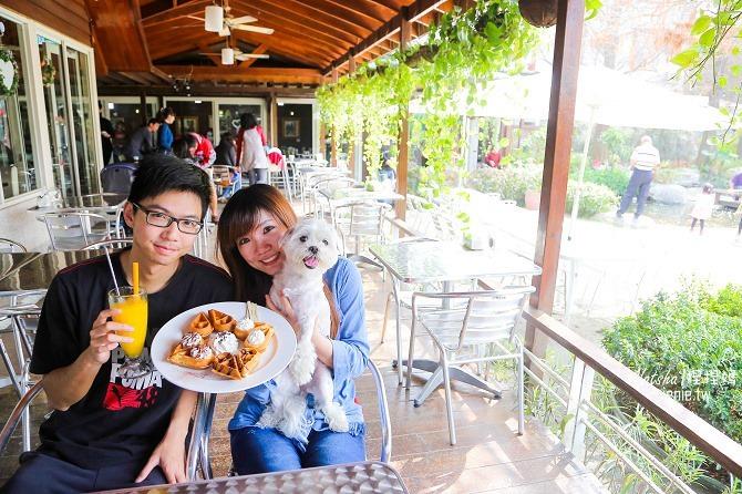 寵物友善餐廳│親子餐廳│彰化田尾美食│全得玫瑰莊園~落羽松歐式景觀餐廳