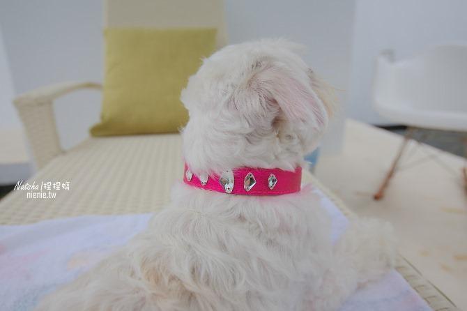 寵物項圈牽繩│好友圈FriendshipCollar~寵物界LV精品英國時尚領導品牌。將您與毛小孩的情誼圈在一起48