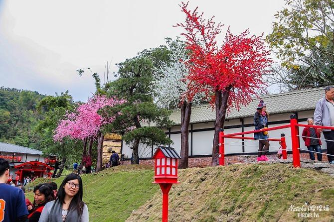 寵物旅遊│南投竹山新景點│桃太郎村~桃太郎故事背景的日式街景結合台灣復古建築116