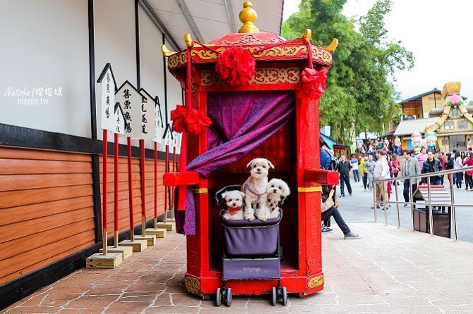 寵物旅遊│南投竹山新景點│桃太郎村~桃太郎故事背景的日式街景結合台灣復古建築126