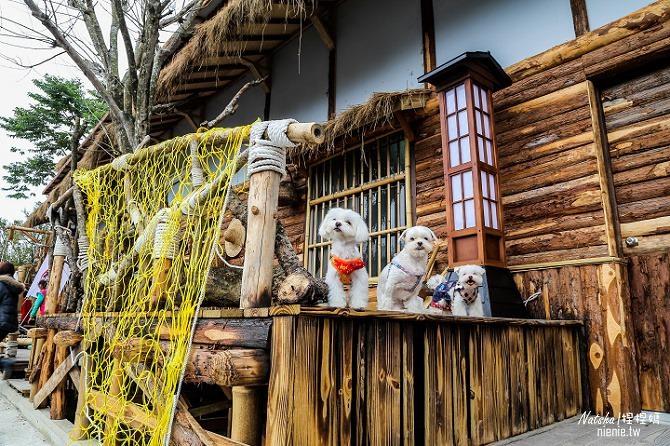 寵物旅遊│南投竹山新景點│桃太郎村~桃太郎故事背景的日式街景結合台灣復古建築19