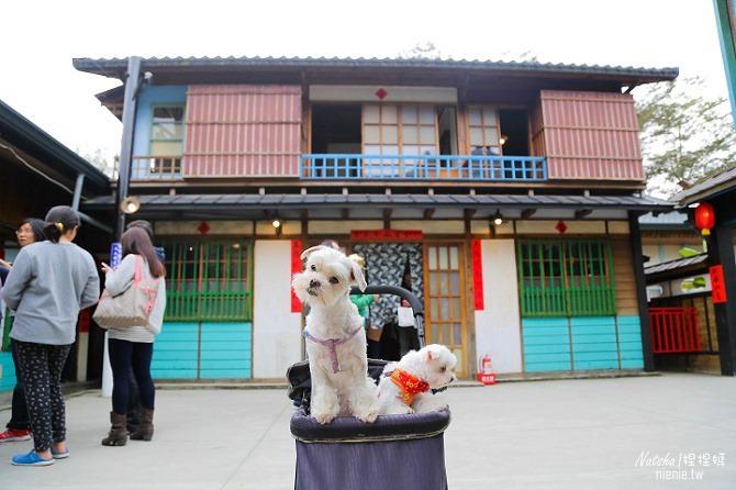 寵物旅遊│南投竹山新景點│桃太郎村~桃太郎故事背景的日式街景結合台灣復古建築98
