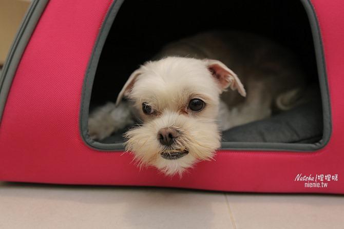 寵物外出包及寵物窩床推薦│ibiyaya~棉花糖寵物空氣包、寵物三角窩19